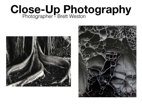 Close-Up Photographers - GCSE Photography Reference / Ideas