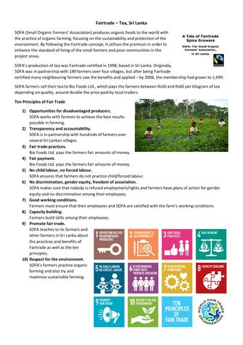 GCSE Geography - Fairtrade tea, Sri Lanka