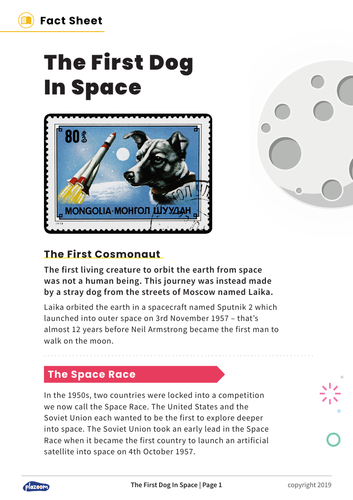 Laika: The First Dog In Space – Non-Fiction and Comprehension Questions for KS2