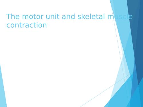 OCR H555 Presentation for Motor units