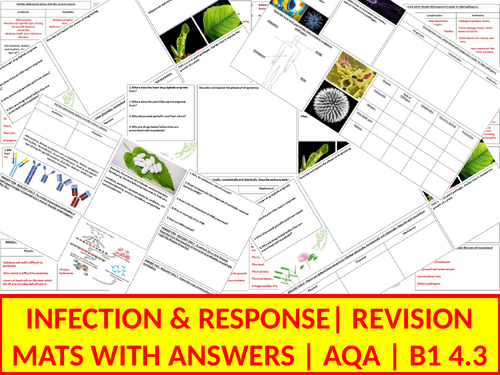 B1 Revision Mats | 4.3 Infection & Response | AQA | With Answers