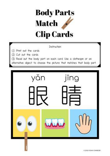 Body Parts Matching Activity (Mandarin Chinese)
