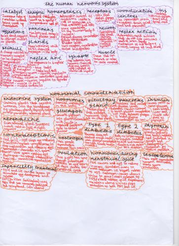aqa gcse biology paper 2 posters