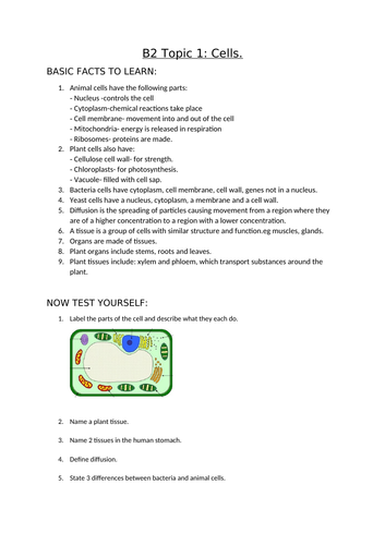 AQA Biology GCSE topic B2.1 cells facts, short and 6 mark Qs and As