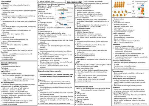 The control of gene expression crib sheet