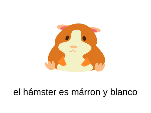 Spanish pets - a presentation to introduce pet names and colours - Mira 1