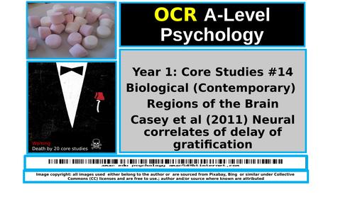 OCR A-Level Psychology: Core Study (Bio/Contemporary) #14  Casey et al (2011) Neural Correlates