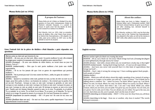 Literary Text- A Level French- Mama Keïta- Worksheet