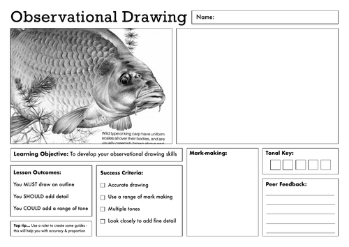 Observational Drawing Worksheet