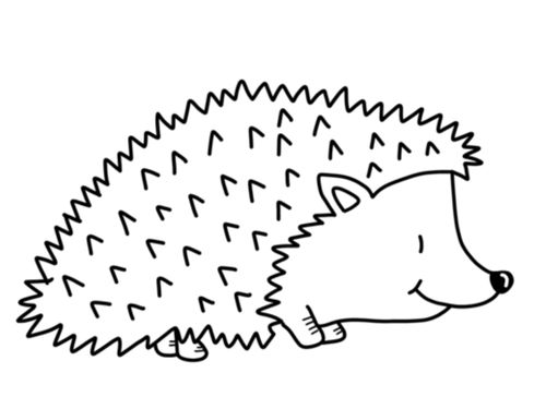 Hedgehog Colouring Pack