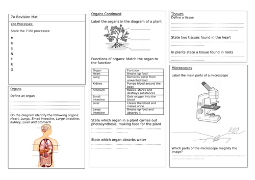 Year 7 Revision Mats for New SoW Exploring Science
