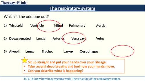 RO23 Body System Respiratory System lessons