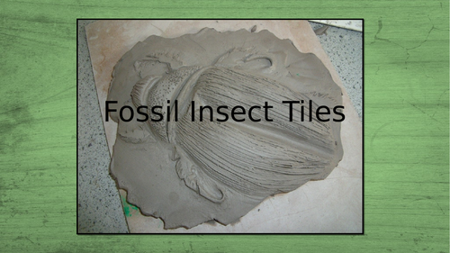 Clay Insect tiles.