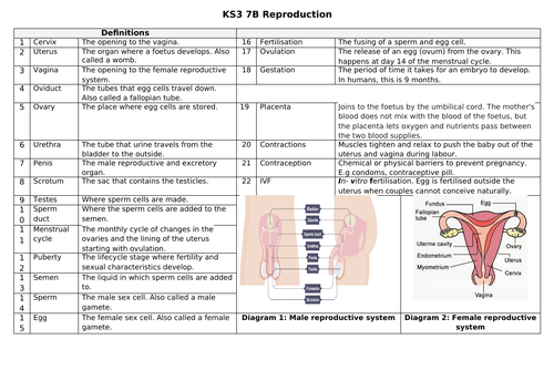 Key Stage 3 Knowledge organiser 7B Reproduction