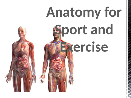 Muscle Fibre types and Contractions