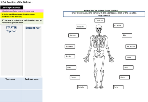 AQA PE GCSE Movement Analysis Part 1 FL.