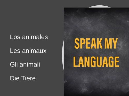 Animals Connect 4 for French, Spanish, German class;  Mira, Expo, Stimmt!