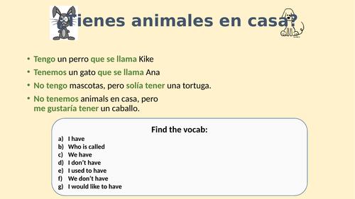 Las mascotas / pets beginners Spanish short activities