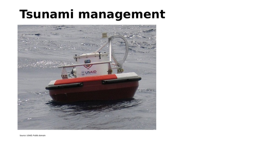 Tsunami management with Indian ocean tsunami as a case study