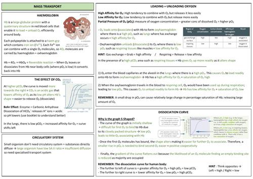 AQA A LEVEL BIOLOGY - Mass Transport Revision
