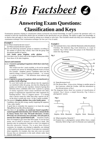 OCR A-Level Biology Classification Worksheet With Answers
