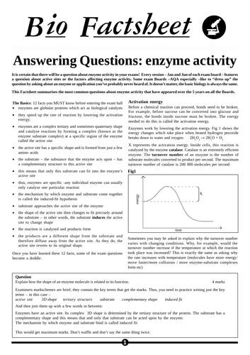 OCR A-Level Biology Enzymes Worksheet With Answers