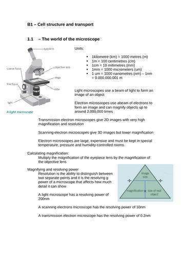 Biology Paper 1 (triple) Revision
