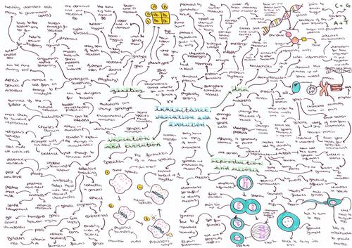 Biology (triple) topic mindmap