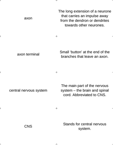 Keyword definition match card sort: Nervous System + Neurotransmission  Edexcel unit 2 (CB2)