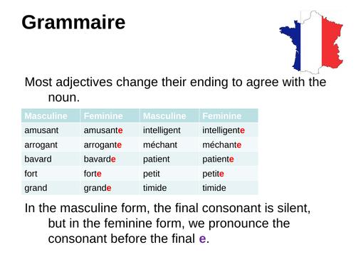 Adjective agreements (Describing people)