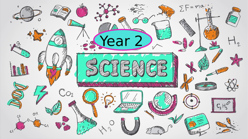 Year 2 Science curriculum breakdown and assessment