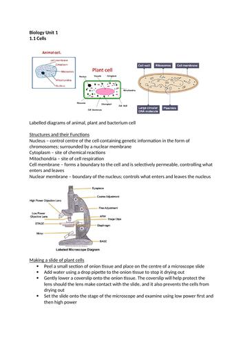 Biology Unit 1 CCEA DAS Revision