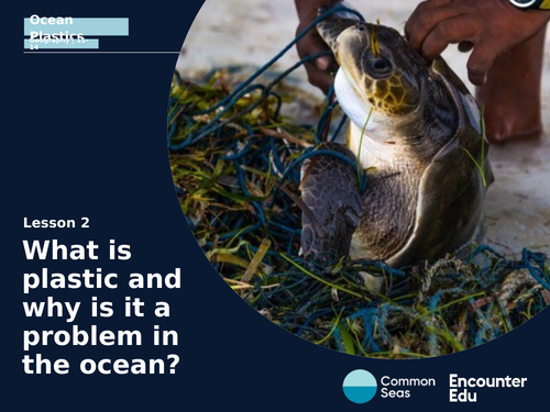 Plastic in oceans: why is it a problem?