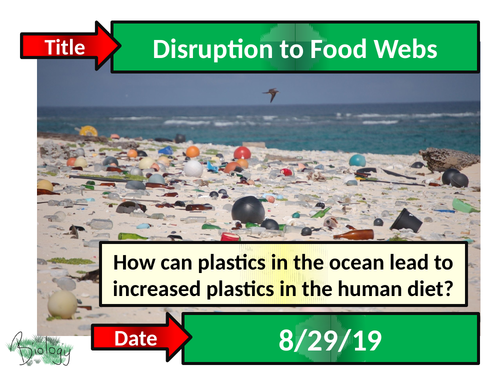 Disruption to Food Webs - Activate