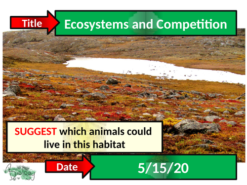 Ecosystems and Competition - Activate