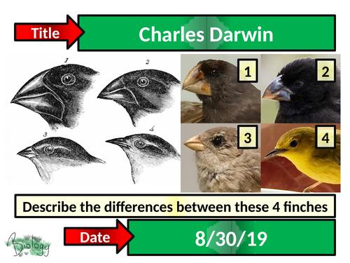 Charles Darwin - Activate