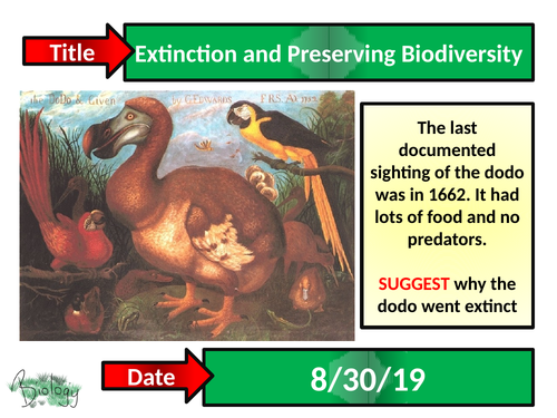 Extinction + Preserving Biodiversity - Activate
