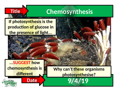 Chemosynthesis - Activate