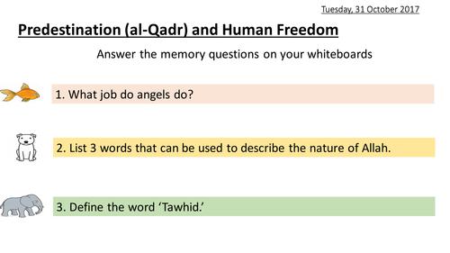 Predestination (al-Qadr) and Human Freedom - Islam - Religious Studies