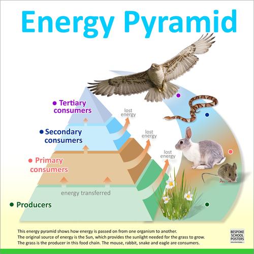 Energy Pyramid Poster