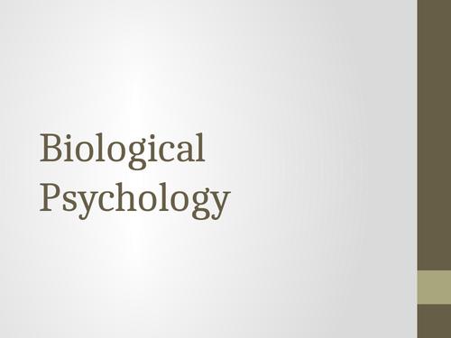 Edexcel IAL Biological Psychology (Contemporary Studies)