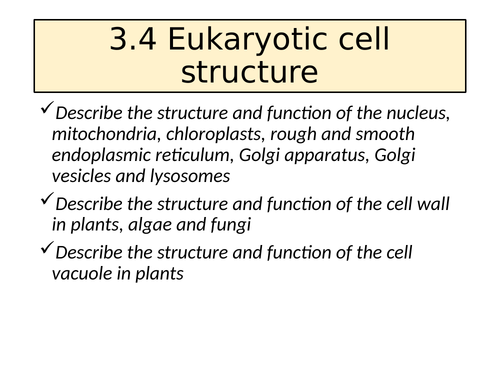 3.4 Eukaryotic Cell Structure AQA A Level
