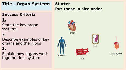 Organs and Organ systems