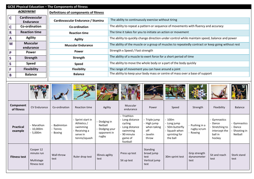 OCR GCSE PE knowledge organisers + homework sheets (Physical training)