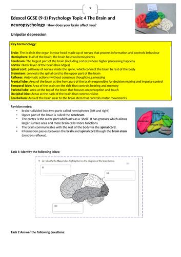 Edexcel 9-1 GCSE Psychology Brain and neuropsychology revision booklet