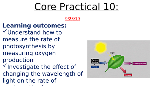 IAL Core Prac 10 - Investigate effects of light intensity and wavelength  on rate of photosynthesis