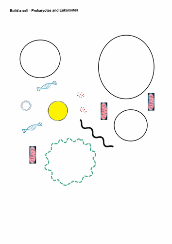 Build a cell - Prokaryotes and Eukaryotes