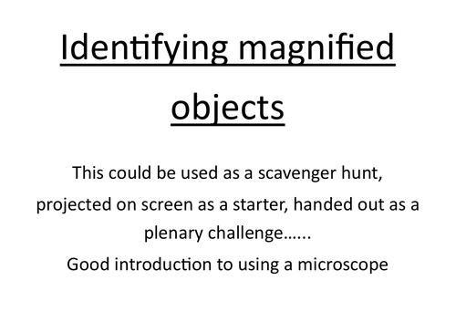 Microscope pictures