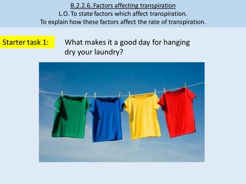 Transpiration / Factors Affecting Transpiration