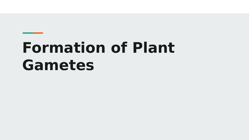 Formation of Plant Gametes Powerpoint